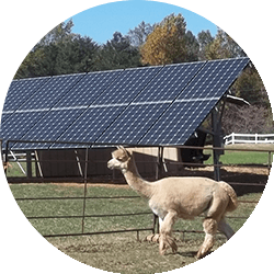 commercial-solar-ground-mount